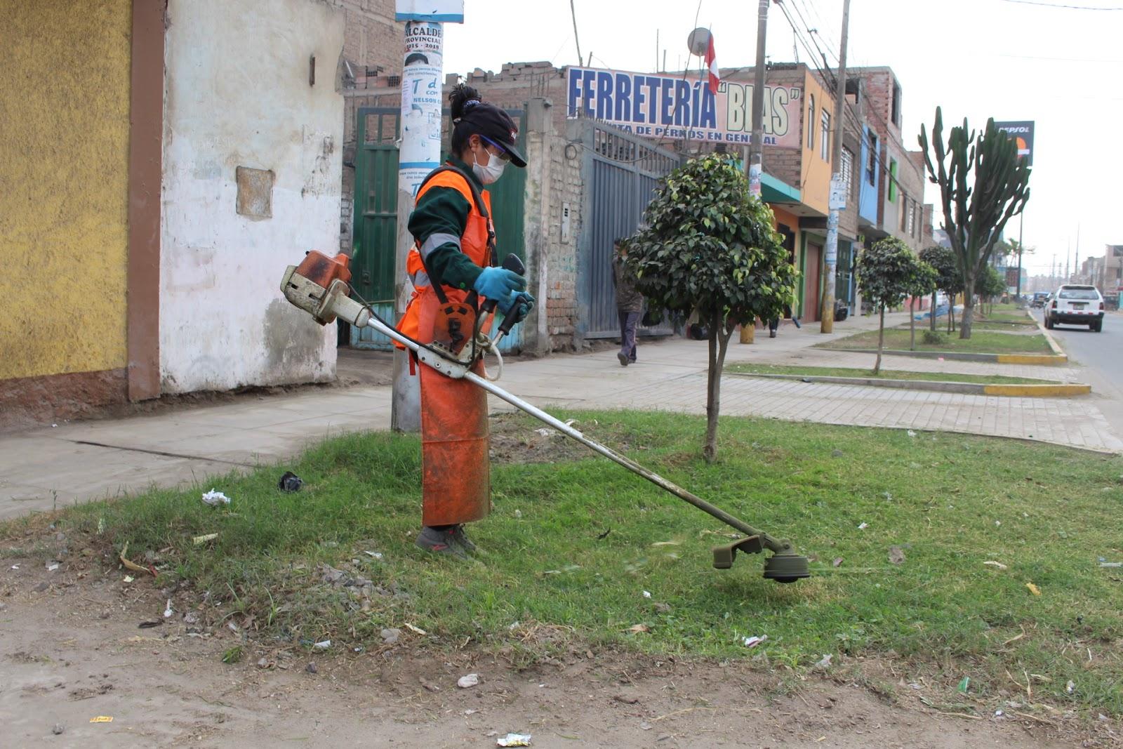 Municipalidad provincial de huaral mantenimiento de for Mantenimiento de parques y jardines