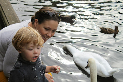 family feeding swans