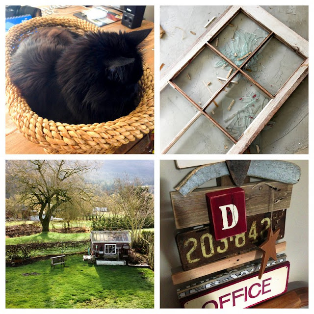 cat-basket-broken-old-window-sunshine-outdoors-project-fail-Instagram-Update-6-Funky-Junk-Interiors