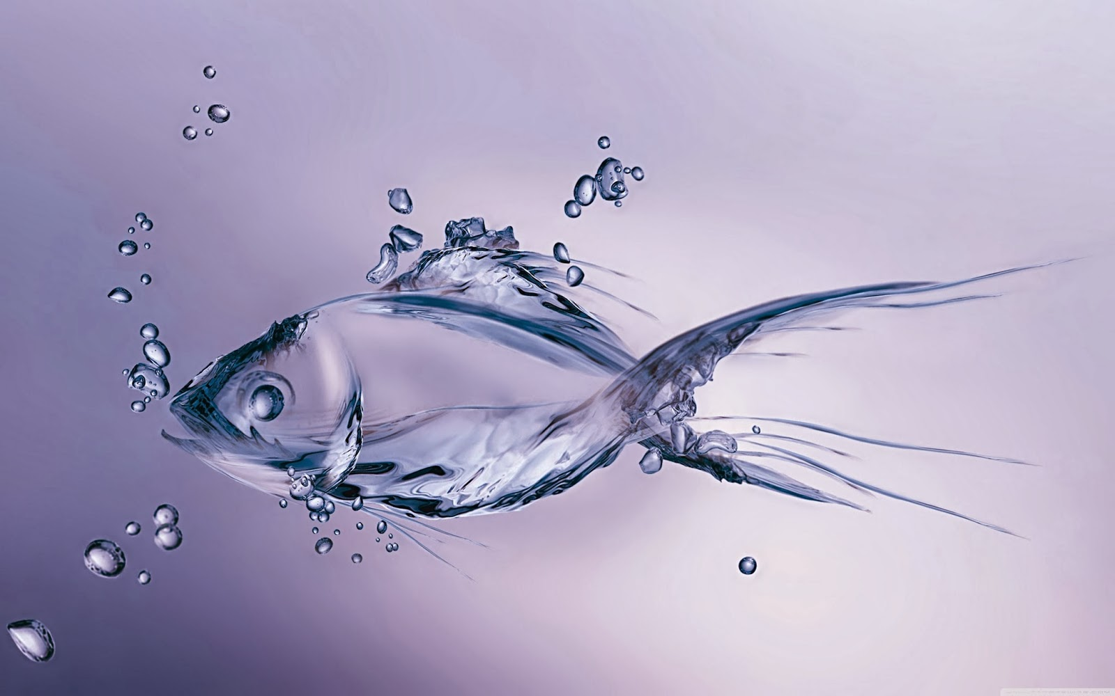 Wallpaper water fish techies tips and tricks for Wallpaper fish in water