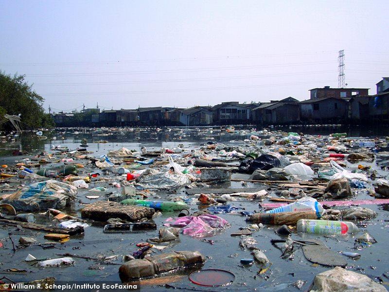 Com vastas áreas de mangue invadidas por palafitas, o estuário de Santos acabou se transformando em uma enorme sopa de plástico. Armadilha mortal para diversas espécies que buscam no mangue um local para se alimentarem e se reproduzirem.