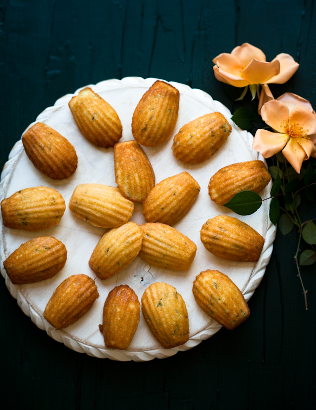 Vanilla Bean Madeleines Recipes — Dishmaps
