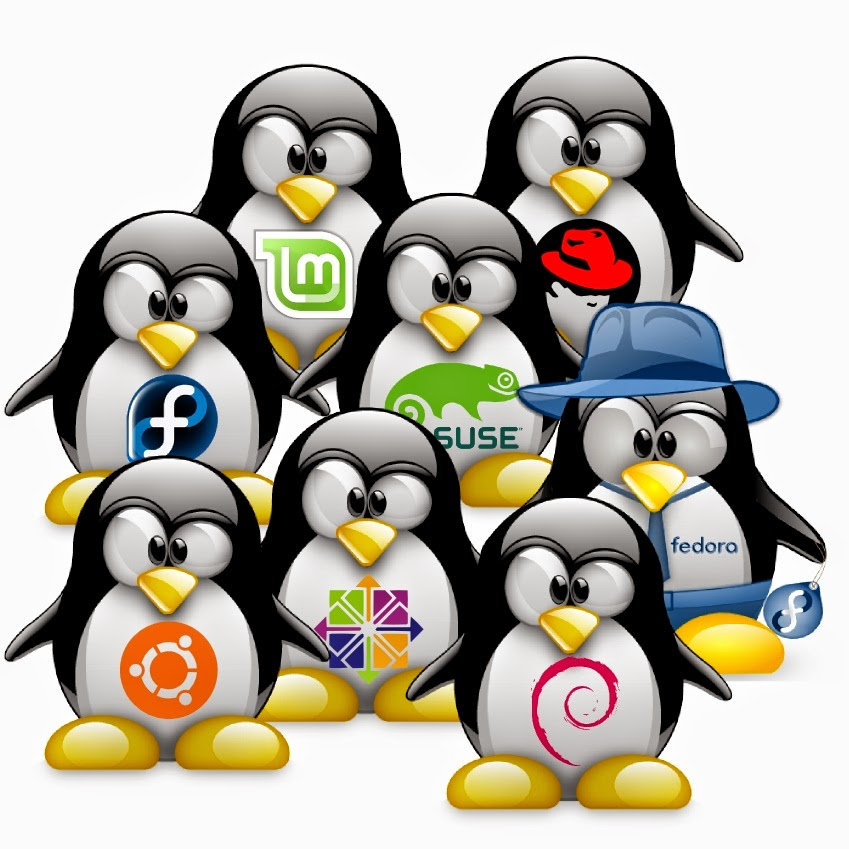 SWAP nas distros Linux