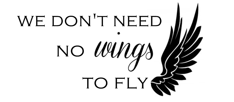 we don't need no wings to fly