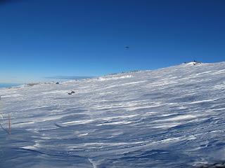 Yeti in snow