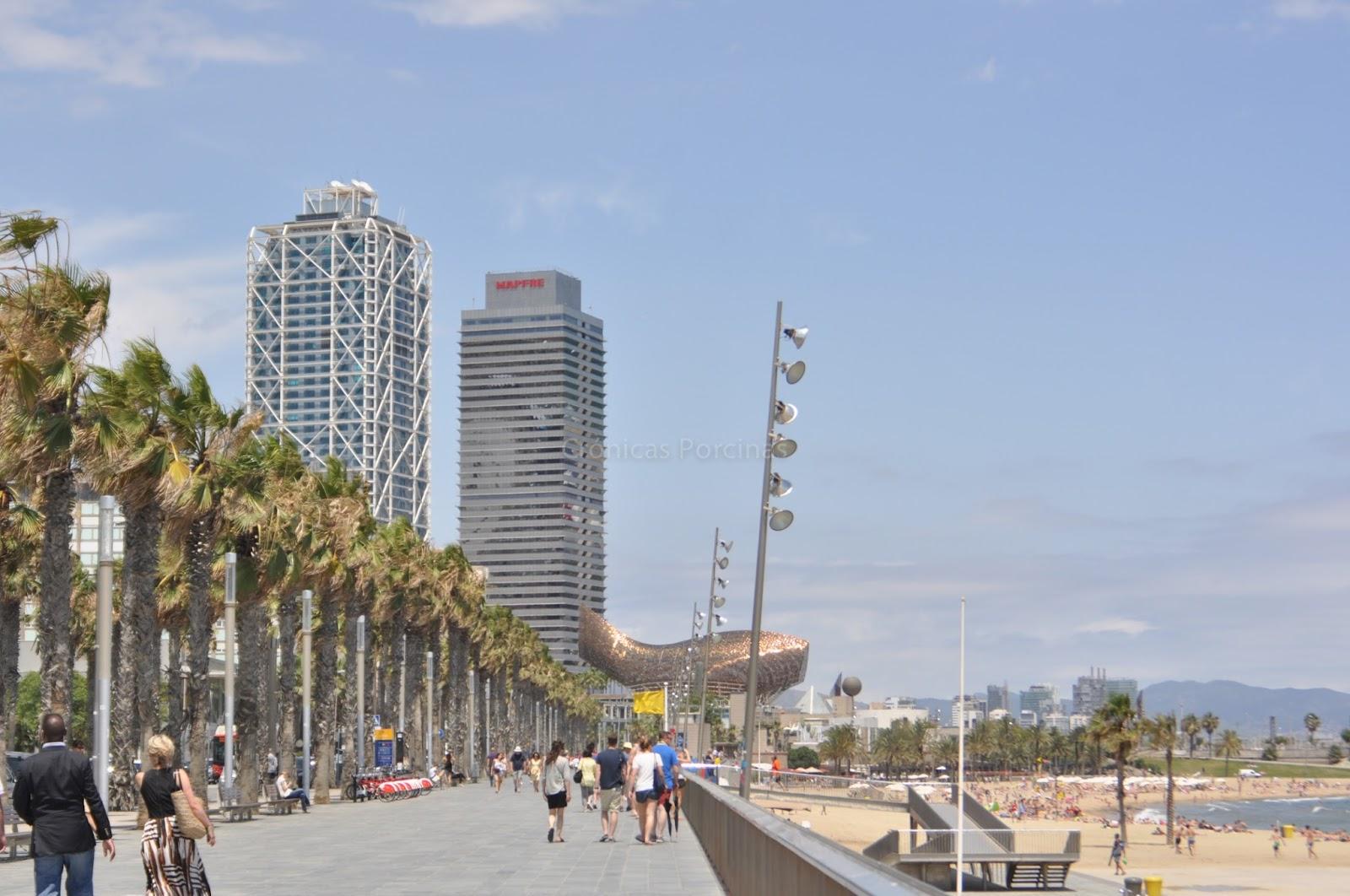 Paseo Playa de Barcelona