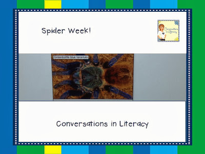 spider from Reading A-Z book