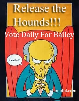 VOTE DAILY FOR BAILEY!!!