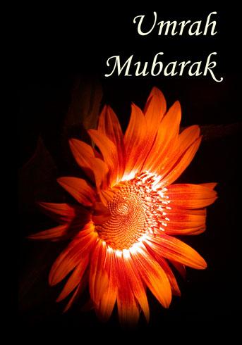 Umrah Mubarik Happy Omrah 003 - Sheem Umrah Mubarak :x