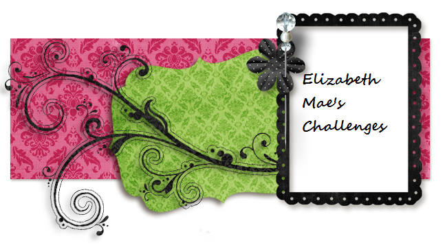 Elizabeth Mae's Challenge's
