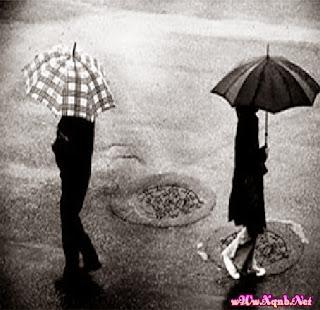 Ngày mưa và nỗi nhớ, xqnb.net