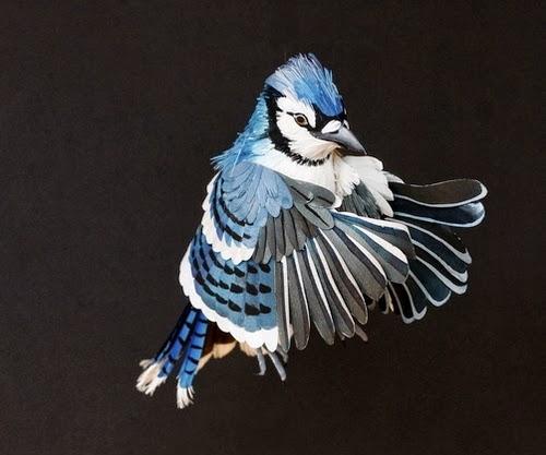 05-Blue-Jay-Paper-Bird-Sculptures-Colombian-Artist-Diana-Beltran-Herrera-www-designstack-co
