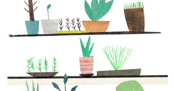 Mercredi et compagnie faire pousser une jungle - Faire pousser une mangue ...
