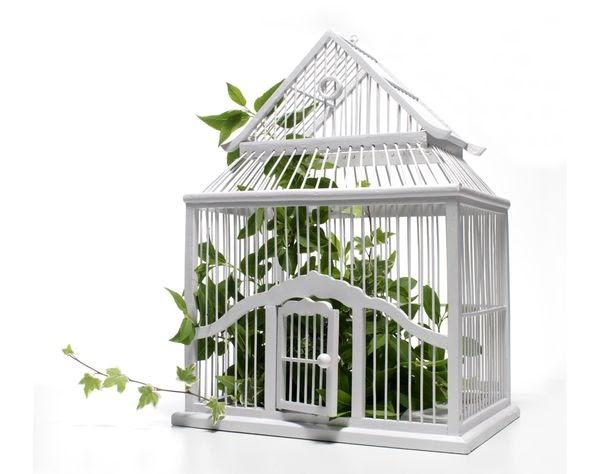 des id es pour ceux qui en veulent une cage oiseau. Black Bedroom Furniture Sets. Home Design Ideas