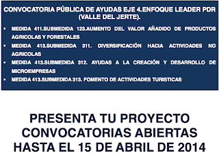 Convocatoria pública de ayudas EJE 4, ENFOQUE LEADER PDR (Valle del Jerte)