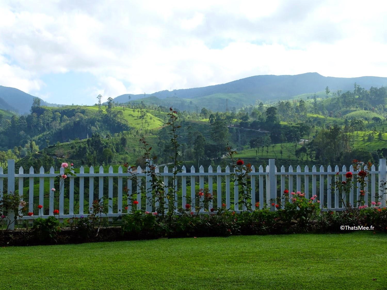 Jardin hotel Amaya Langdale Nuwara Eliya Sri-Lanka  au coeur des plantations thé