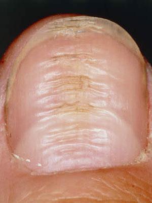 Z Nail Salon And Spa