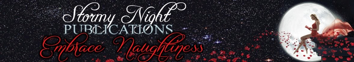 Sign up for the new Stormy Night Publications newsletter