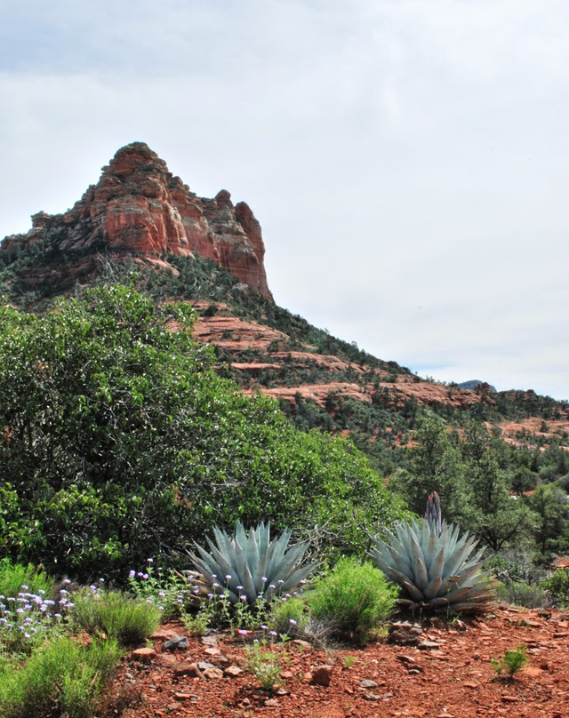 Sedona, Arizona | Em, Then Now When