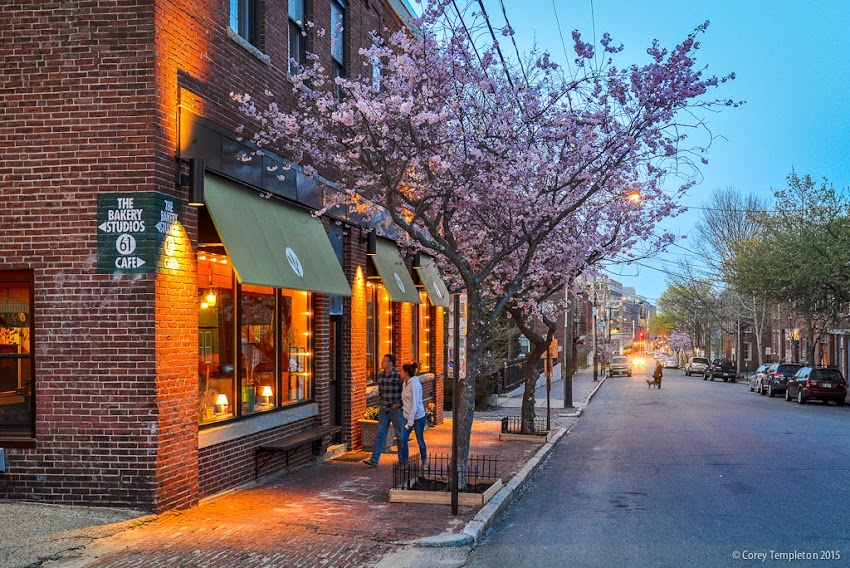 Artemisia cafe restaurant at 61 Pleasant Street in Portland, Maine USA May 2015 photo by Corey Templeton.