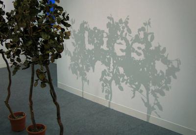 Shadow Illusion Lies Word Illusion