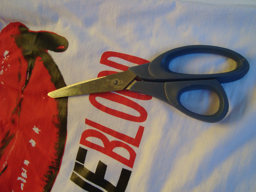 DIY Customizando Camiseta de banda Ideal Shop, True Blood