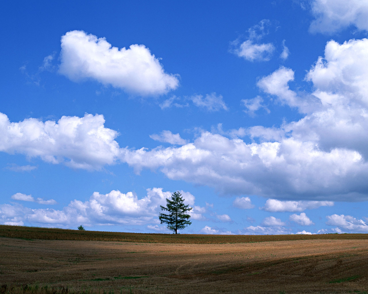 Blue Sky Free Stock Photos