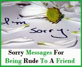 Sorry For Being Rude Quotes, Quotations & Sayings 2018