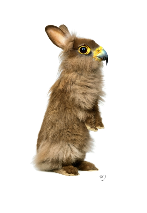06-Hawk-Rabbit-Sarah-DeRemer-You-Are-what-You-Eat-Photo-Manipulation-www-designstack-co