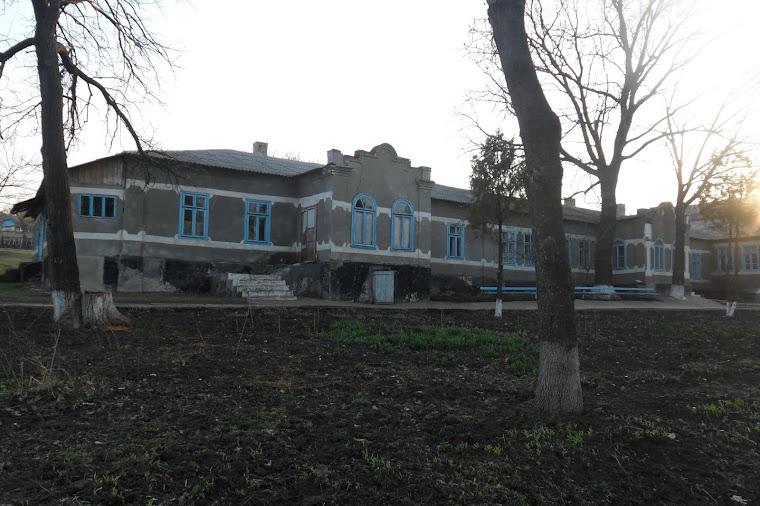 Conacul familiei Fotescu (actualmente şcoala auxiliară)