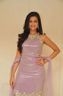 Hasha Nandini pos at cmr aashadam event 001.jpg