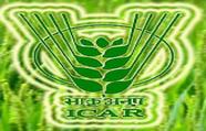 Krishi Vigyan Kendra Nanded logo