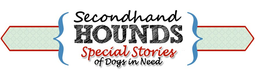 Secondhand Hounds Special Stories