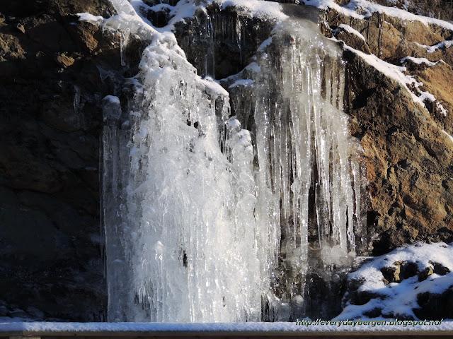 Bergen ice