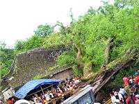 Misteri Tumbangnya Pohon Asem Keramat Kemis Kayen