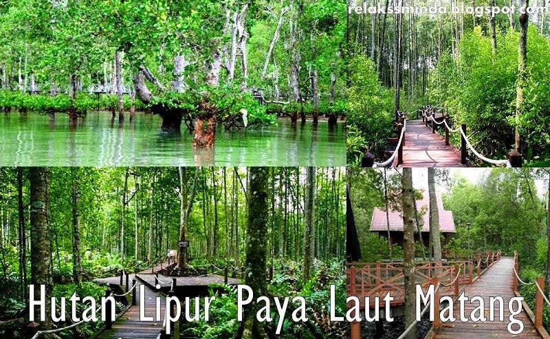 Menikmati Keindahan Alam dan Berekreasi di Hutan Lipur Negeri Perak