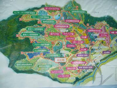 大阪府交野市・大阪市立大学 理学部付属 植物園MAP