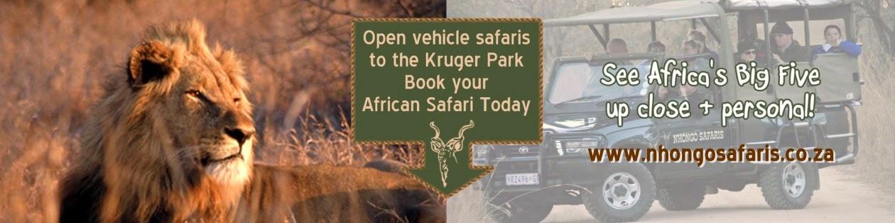 Kruger Park Safaris Ranger Blog