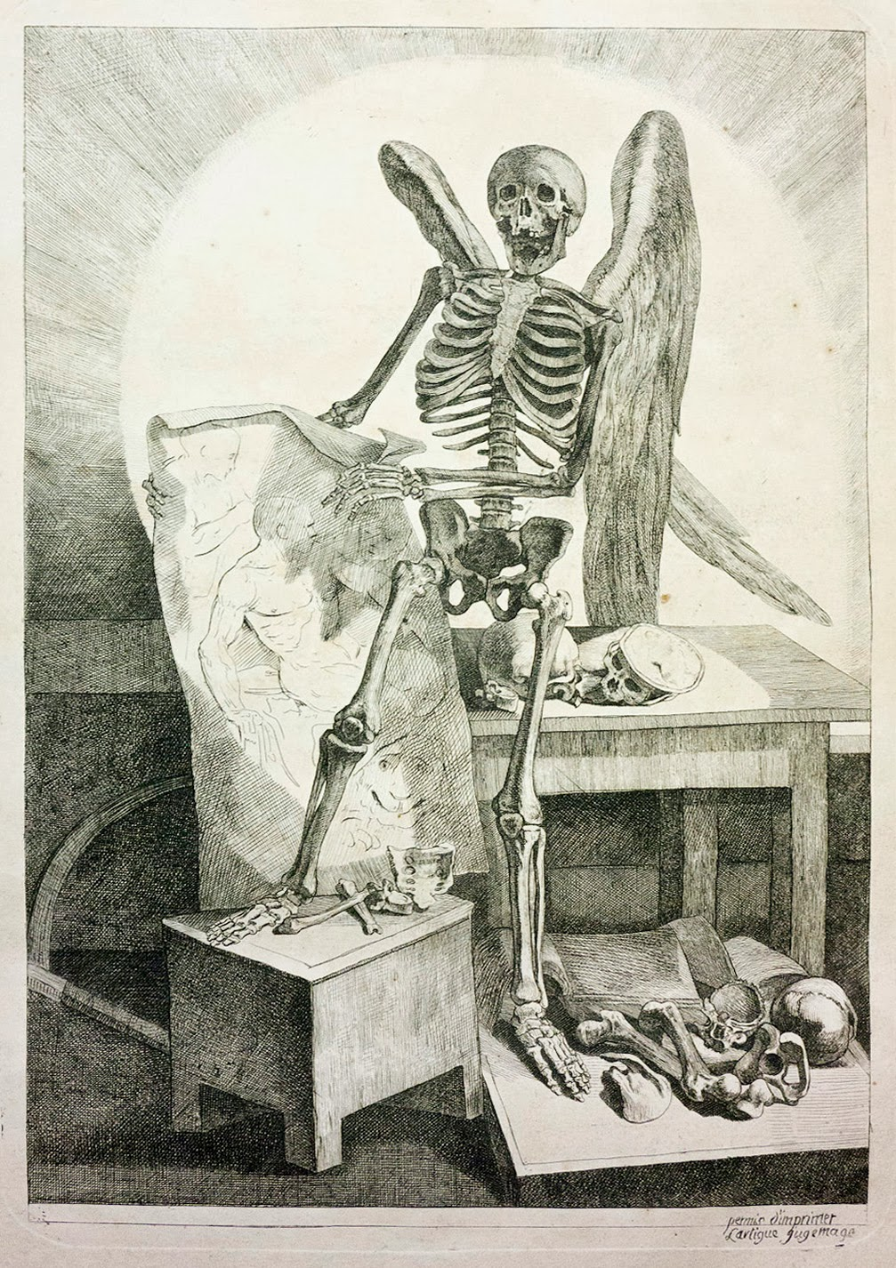 Morbid Anatomy: This Saturday: New York Academy of Medicine Festival ...
