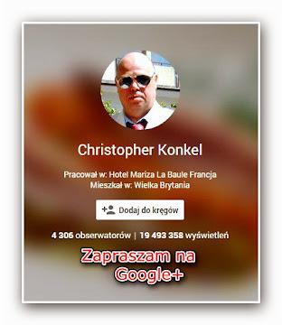 19 milionów wyświetleń - Google+