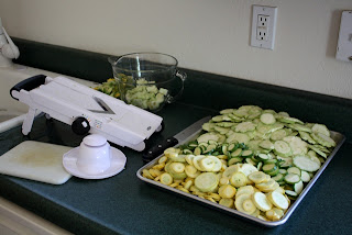 How To Dehydrate Squash - take one recipe by Barefeet In The Kitchen