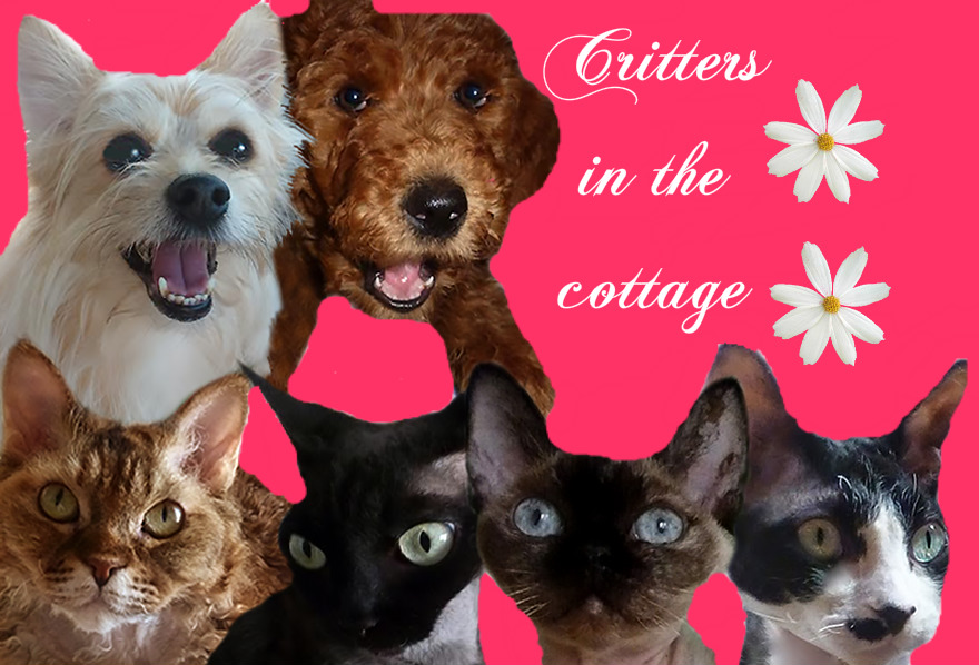 Critters in the Cottage