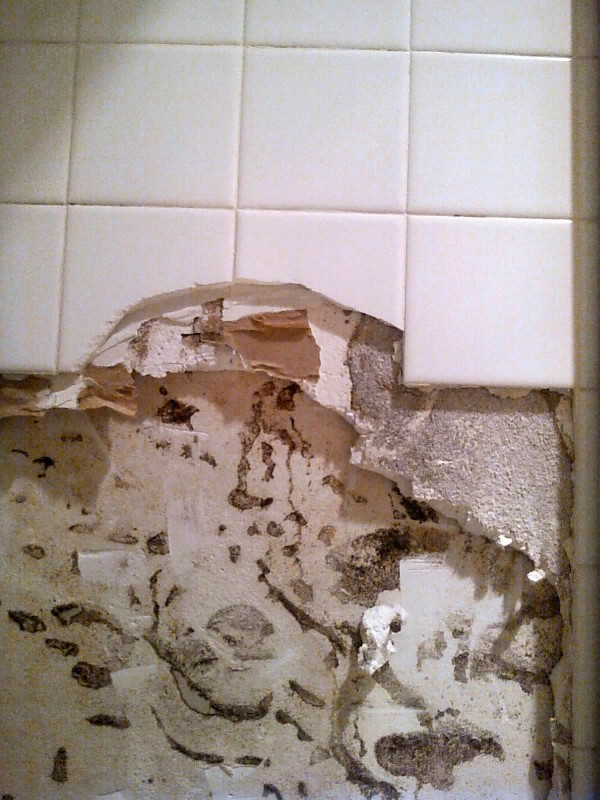 Bathroom Tiles Loose shower tiles getting loose? this is most likely why | confessions