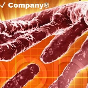 ✔ Company®