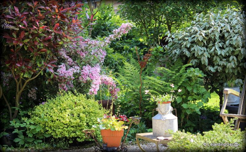 Le jardin d 39 oscar tour de jardin - Petit jardin plan de la tour tours ...