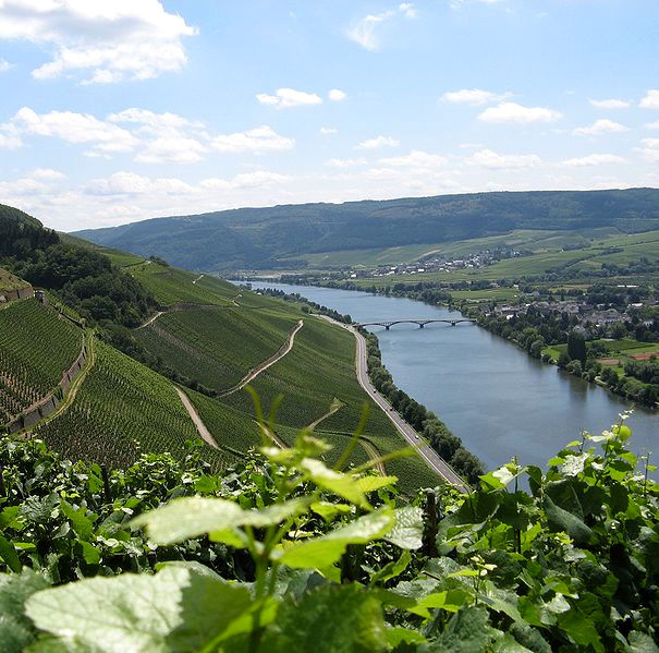 The idyllic countryside along the Moselle River in Germany.