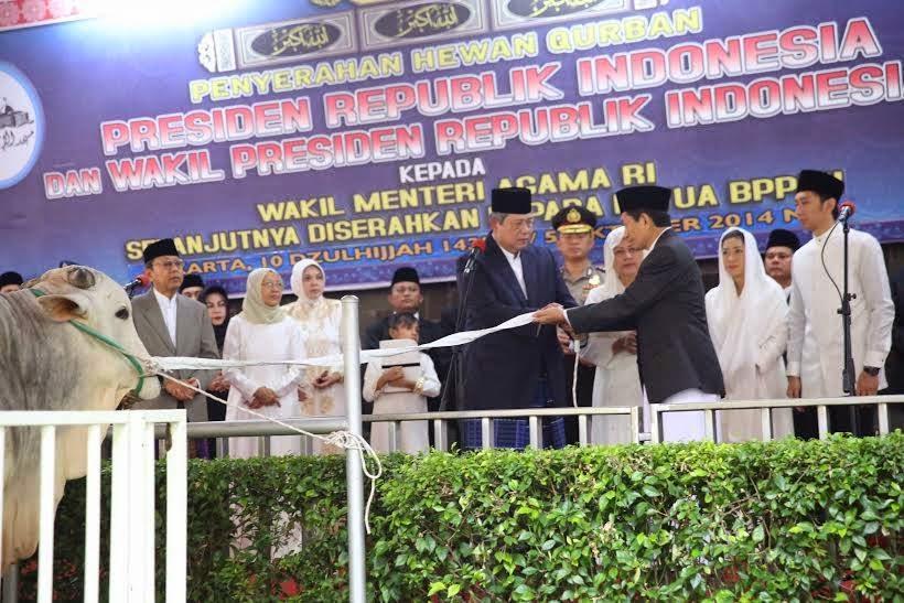 Presiden SBY Serahkan Satu Ekor Sapi Kurban