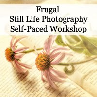 Still Life Photography Workshop