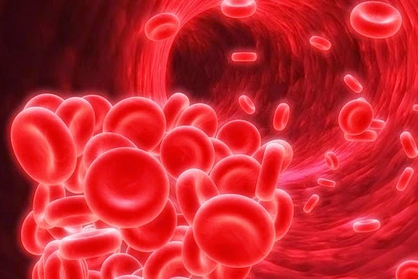 types, diagnosis, and treatment of anemia