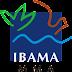 Ibama lança edital com 108 vagas para analistas; salário de R$ 5,4 mil